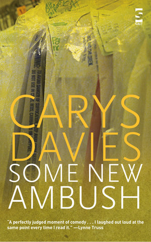 Carys Davies Some New Ambush